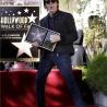Paul McCartney pe Walk of Fame din Hollywood