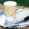 Cea mai scumpă brânză din lume se produce în Serbia